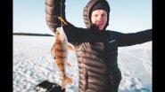 Безумный окунь на балансир. Рыбалка на Финском заливе.