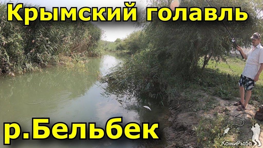 Рыбалка в Крыму. р. Бельбек 2018 год. Крымский голавль
