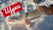 Щука 3800 на Обском море. Зимняя Рыбалка Спирино