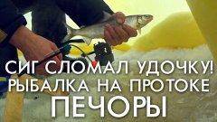 Рыбалка на протоке печоры или как сиг сломал удочку времен ссср