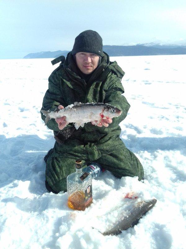 Сиг, первый улов Чивыркуйского залива