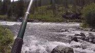 Рыбалка на Хариуса в Горном Алтае на Плато Укок