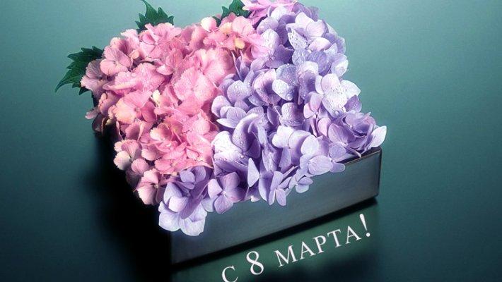 Сайт Новосибирских рыбаков поздравляет наших милых дам с 8 марта!
