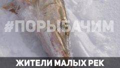 Зима 2019. Зимняя рыбалка на малой реке. Поиск и ловля щуки, окуня на балансир и мормышки.