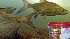 Кровяная мука и реакция рыбы на эту прикормку