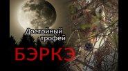 Охота на волка в Якутии. Достойный трофей.//Wolf hunting in Yakutia. A worthy trophy.