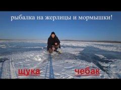 Рыбалка на жерлицы и мормышки 2019. Щука и чебак!