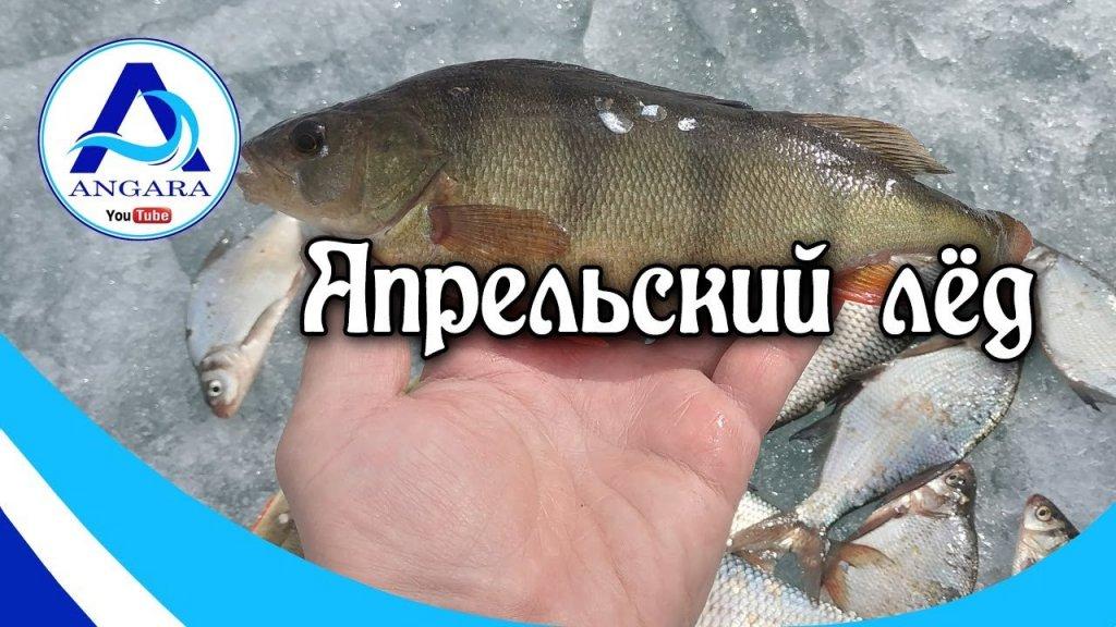 Весенняя рыбалка. Апрельский лед.