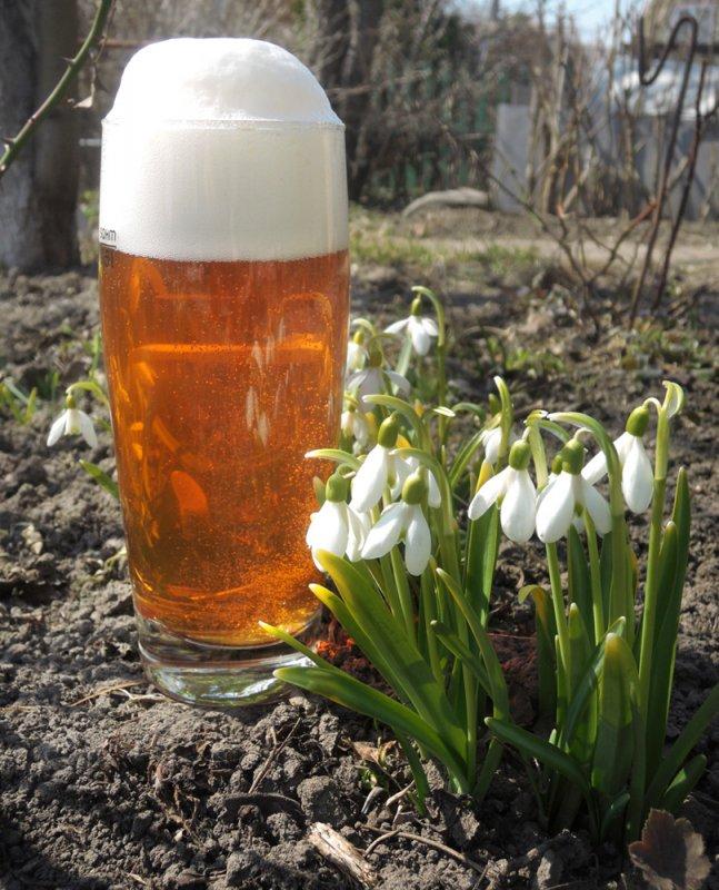 Весна... Пиво варится, подснежники цветут.