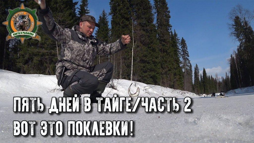 5 дней в тайге/Хариус попёр!/Часть 2