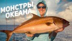 Красоты океанической рыбалки. Сейшельская экспедиция часть 1. Рыбий жЫр 6 сезон
