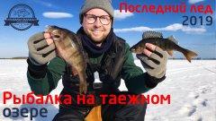 Рыбалка на таежном озере. Окунь на блесну. Последний лед 2019.