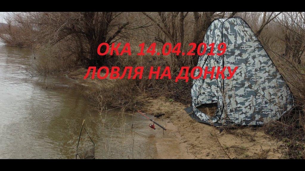 Ока 14 04.19 ловля на донку