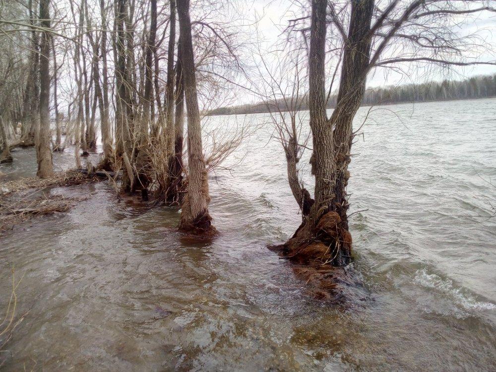 17.04. Река Обь, водичка прибывает.