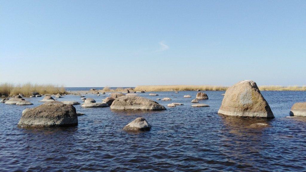 Финский залив. Открытие сезона.