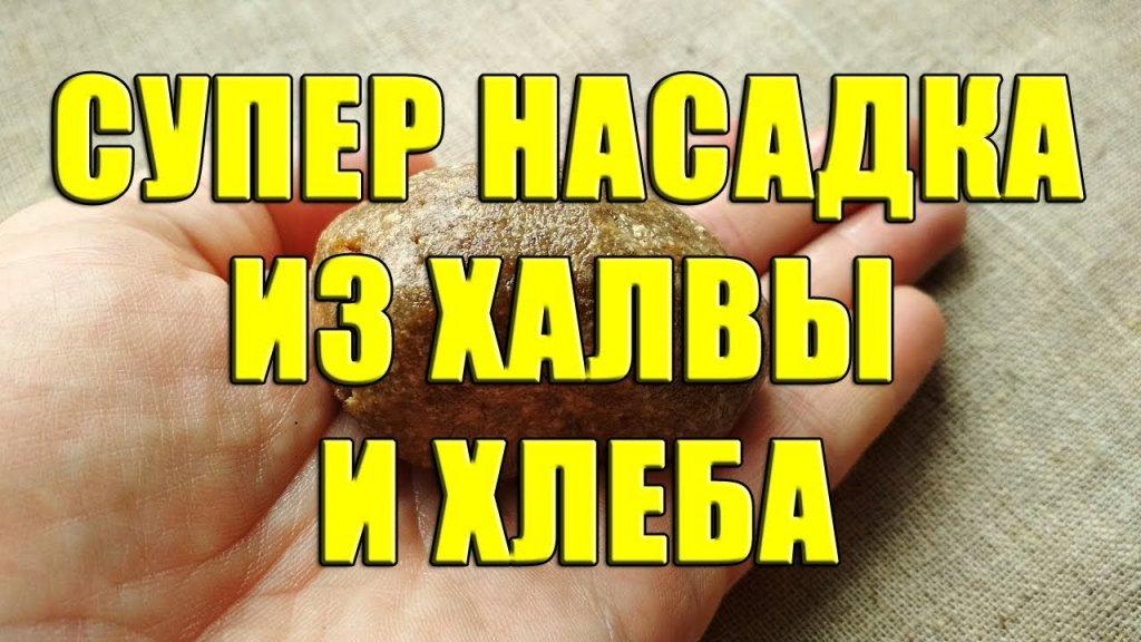Супер насадка из халвы и хлеба. Эффективная приманка из халвы и хлеба