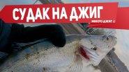 Ловля судака на джиг. Микроджиг весной | Рыбалка с FishingSib 2019