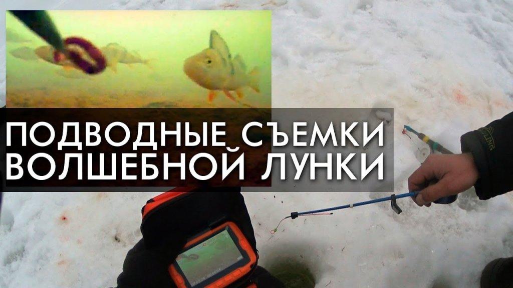 Подводные съемки уловистой лунки. Заключительный день на таежной реке