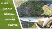 Рыбалка на щуку. Сплав по реке Сок,  10 км в поисках хищника .