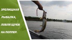 Зрелищная рыбалка на поверхностные приманки, ловля щуки на поппер.