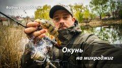 Ловля окуня на микроджиг