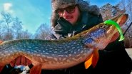 Весенний хапок! Лучшая рыбалка Питерцова. Уроки ловли на малой реке