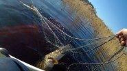 Браконьерские сети в нерестовый запрет.  Анти браконьеры 2019