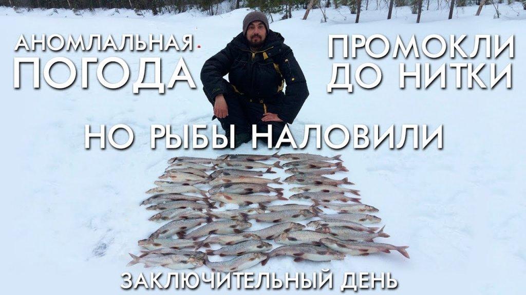 Аномальная погода / промокли до нитки но рыбы наловили / третий день / рыбалка весна 2019