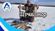 Такой рыбалки у меня еще не было!!!  Рыбалка на Ангаре. Канал Angara.