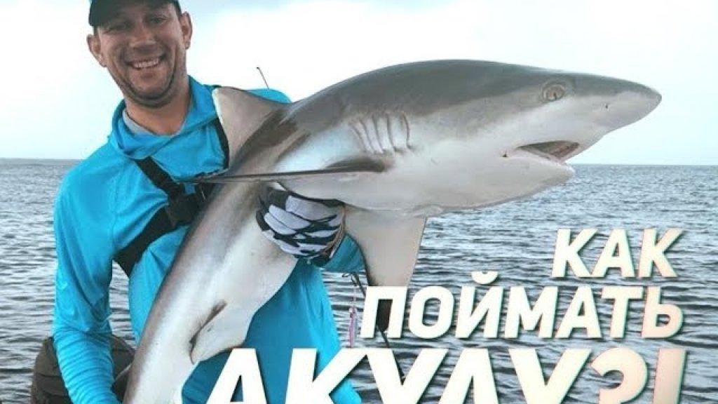 Рыбалка с Сюрпризом! Ловили рыбу, а клюнула АКУЛА!