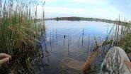 Рыбалка на поплавок весной. АКТИВНЫЙ клёв плотвы на мастырку