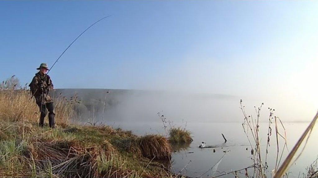 Ёжики в тумане. Рыбалка на озере в молочной долине.