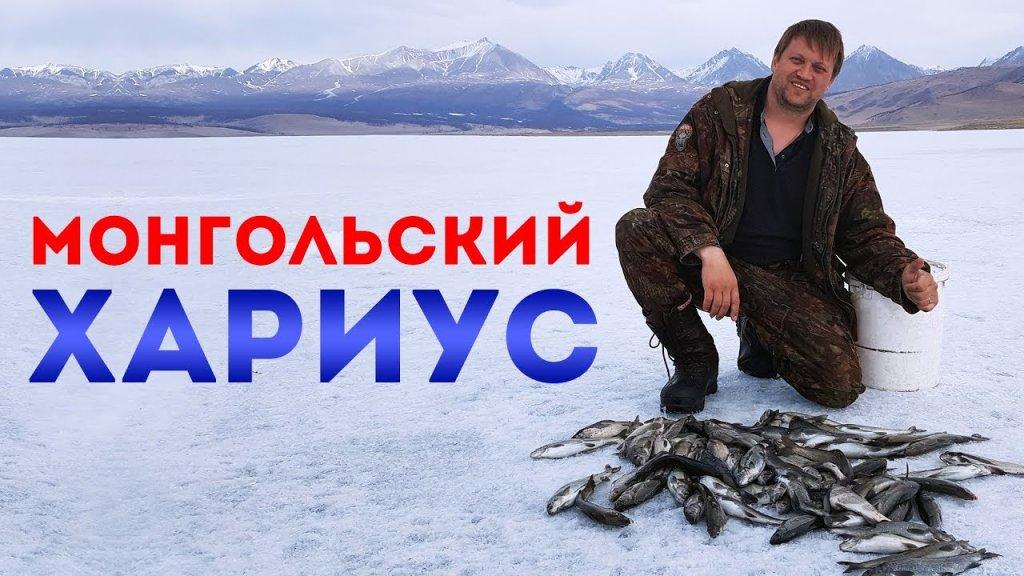 Монголия. Хубсугул. Хариус