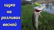 Ловля щуки на спиннинг, рыбалка на щуку