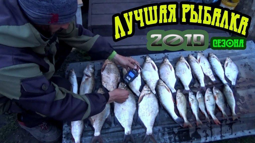 Вот так попали на раздачу закидушки в деле лучшая рыбалка 2019