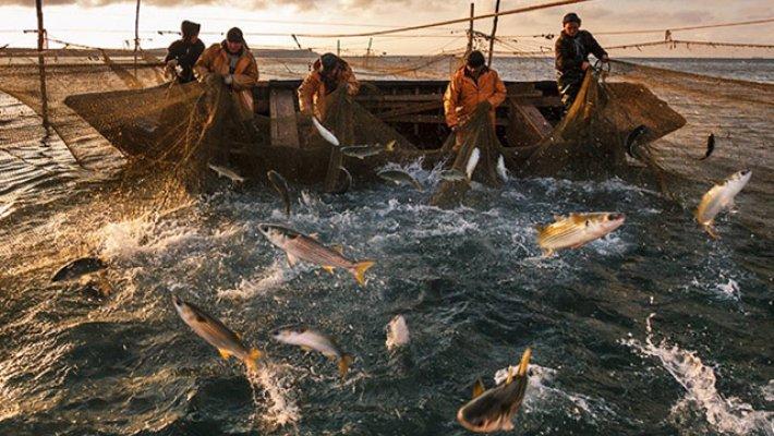Поздравляем с днем рыболовства!