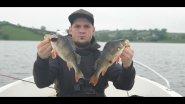 На Рыбалке с Братом, Ловим окуня в отвес, Perch Fishing