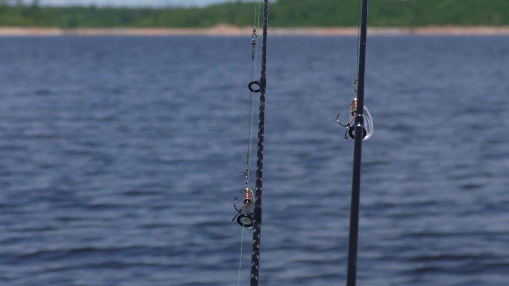 Напали на стаю щук или стая щук напала на нас.  Очень клёвая рыбалка на БВХ.