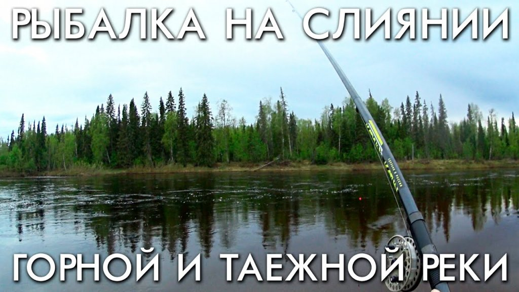 Рыбалка на слиянии горной и таежной рек / хариус на поплавок