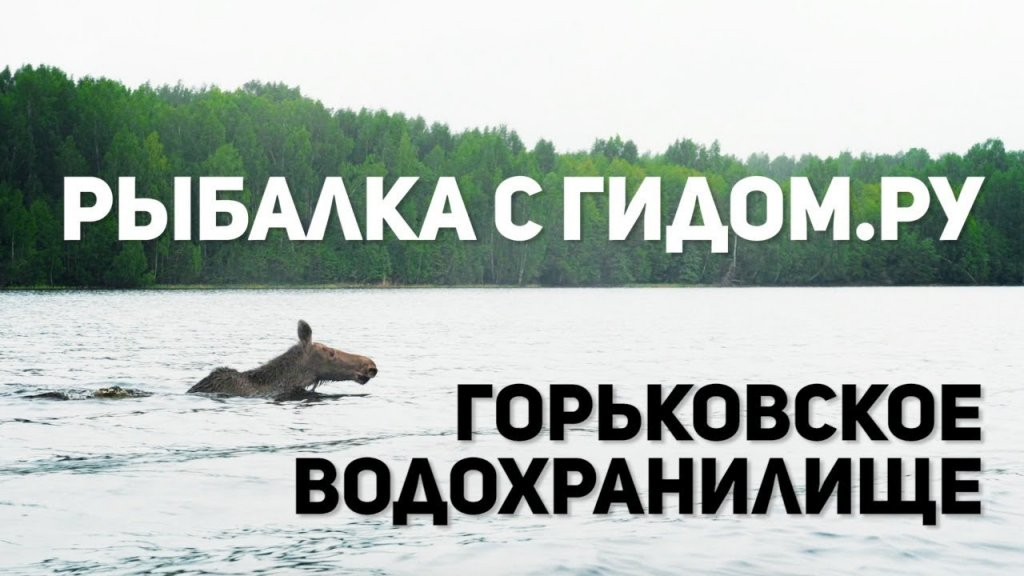 Рыбалка с гидом на Горьковском водохранилище. Река Унжа.