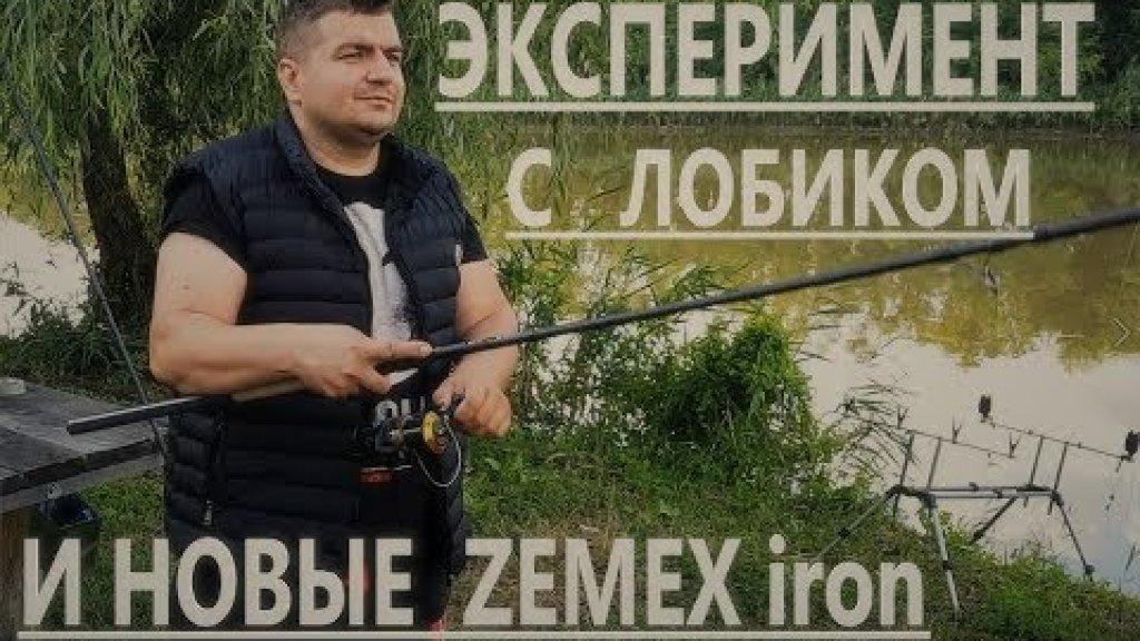 Как ловить толстолобика и карпа? Краткий обзор zemex iron
