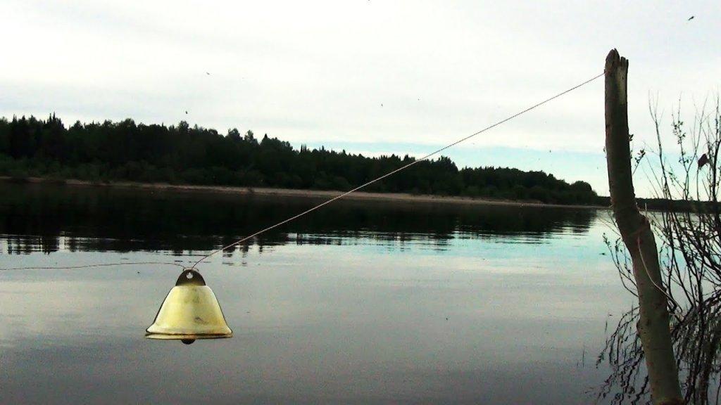 Донки vs Фидер, кто-кого? Рыбалка наедине с тайгой
