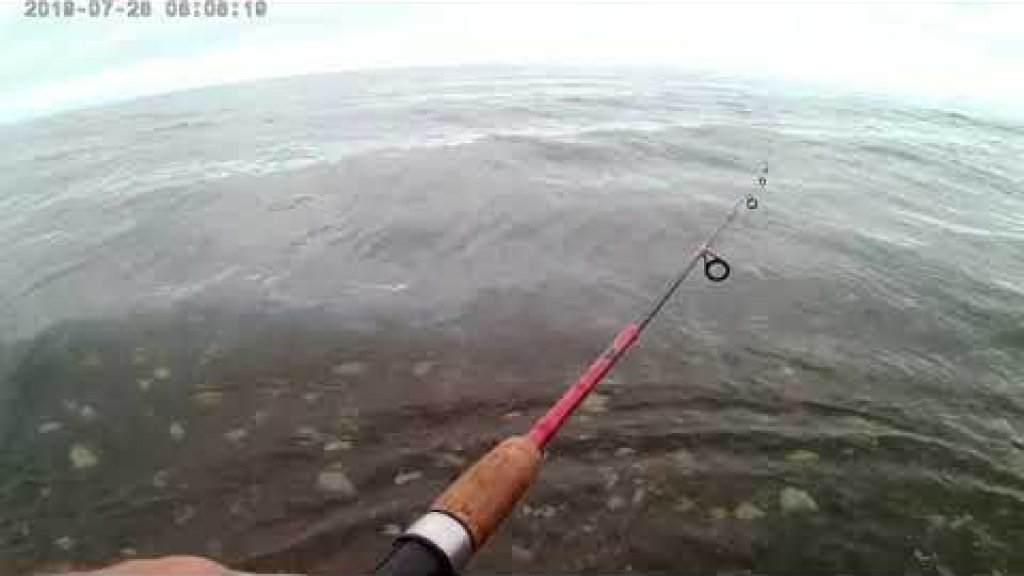 Рыбалка в устье Игривой