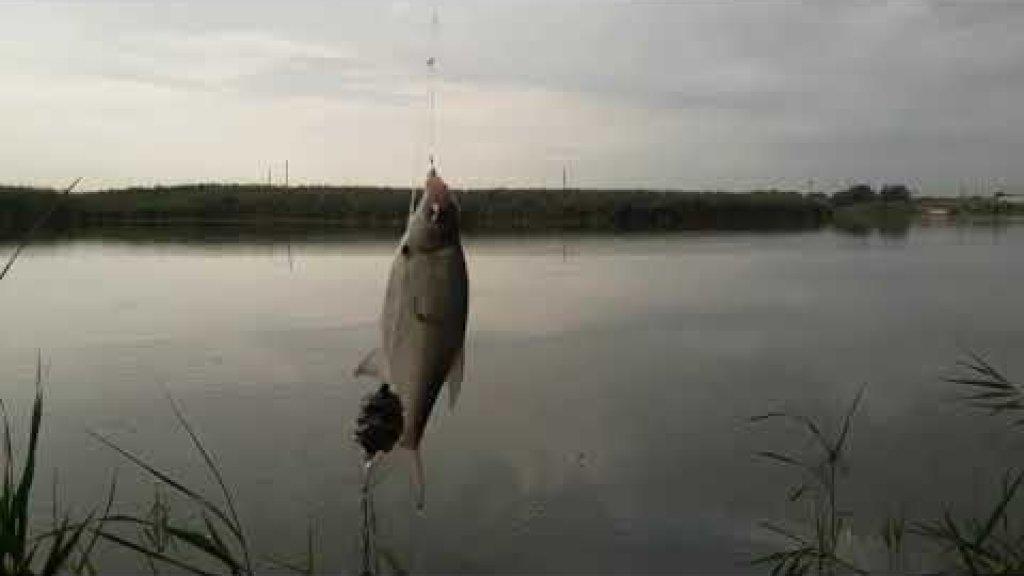 Летняя рыбалка 2019 | отрываюсь под дождем