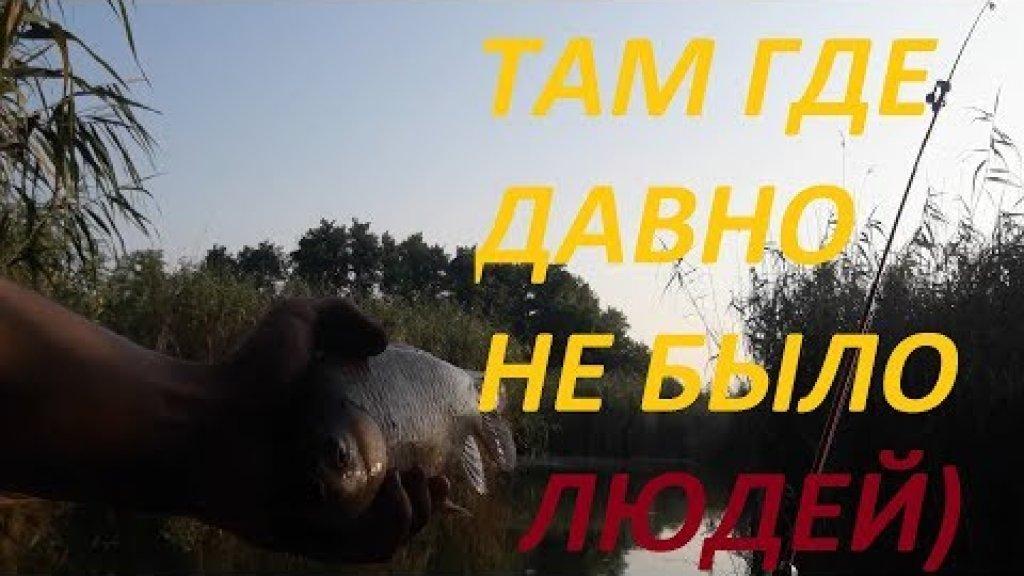 Супер рыбалка в заброшенном месте!!! | килограммовые караси и дикие черепахи)