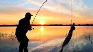 5 ошибок при ловле на джиг или почему ты не ловишь рыбу?!