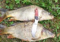 День рыбака удался на славу!