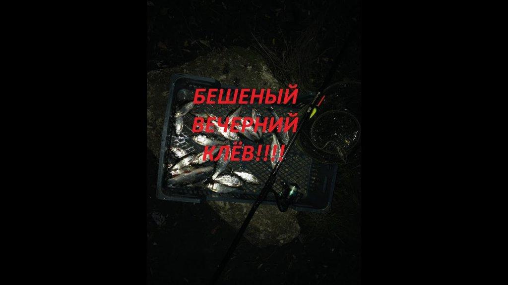 Нара 2.07.2019!!!бешеный вечерний клёв!!!