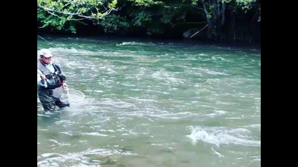 Хариус реки Цехотина!