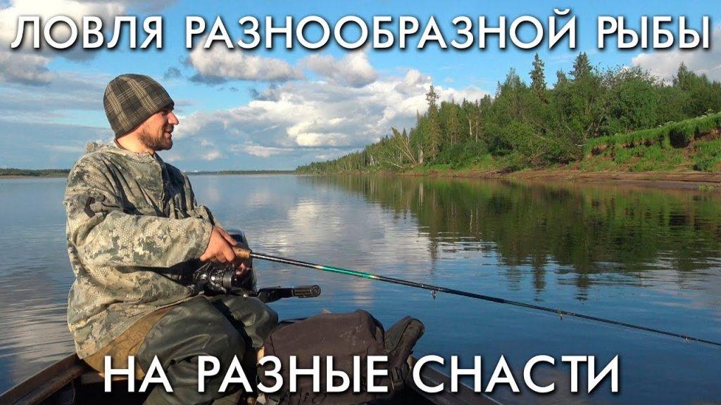 Ловля разнообразной рыбы на разные снасти
